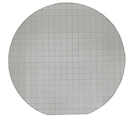Diced silicon wafer for EM