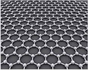 EM-Tec single layer graphene TEM support film on Lacey carbon on 300 mesh copper grids